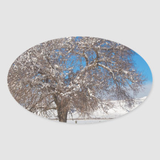Winter Season On The Range Snow and Blue Sky Oval Sticker