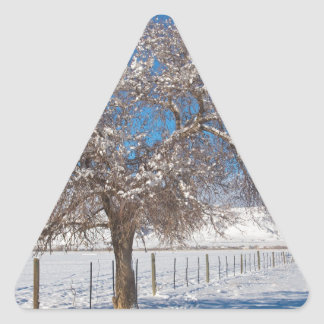 Winter Season On The Range Snow and Blue Sky Triangle Sticker