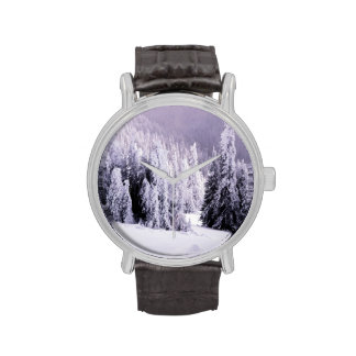 Winter setting watches