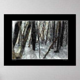 Winter Shadows Poster