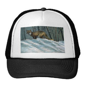 Winter shadows, Red Fox Hat