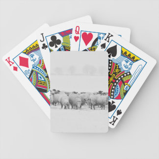 Winter sheep flock bicycle playing cards