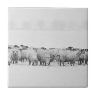 Winter sheep flock ceramic tile