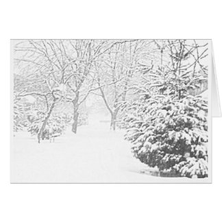 Winter Sketch I Notecard Stationery Note Card