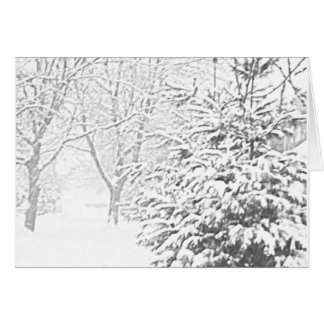 Winter Sketch III Notecard Stationery Note Card