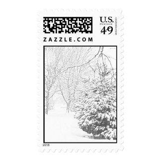 Winter Sketch III Stamps