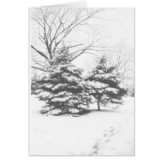 Winter Sketch IV Card