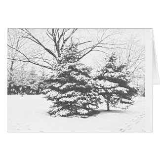 Winter Sketch IV Notecard Stationery Note Card