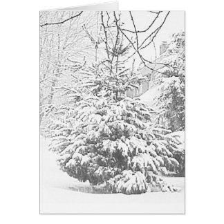 Winter Sketch VI Card