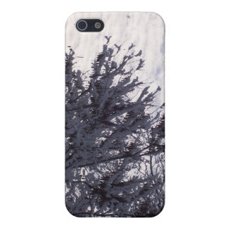Winter Sky Cover For iPhone 5