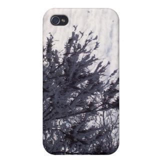 Winter Sky iPhone 4/4S Case
