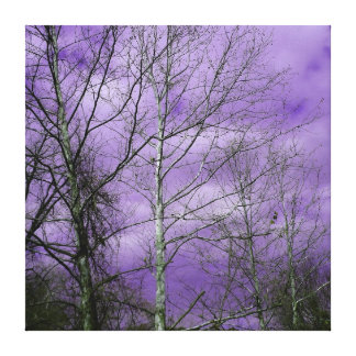 Winter sky with bare trees canvas