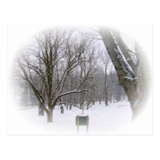 Winter Sleep in Matte Postcard