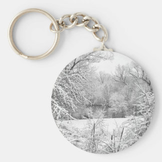 Winter Snow At Huron River Keychain