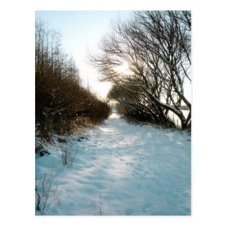 Winter Snow Covered English Countryside Path Postcards