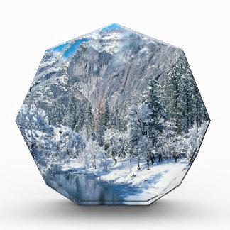 Winter Snow Flocks Yosemite Acrylic Award