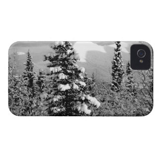 Winter Snow iPhone 4 Cover