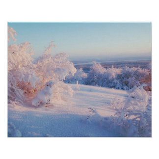Winter Snow Landscape Photo Nature Wall Poster