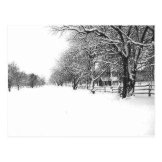 Winter Snow on Parley Street Postcard