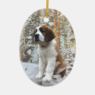 Winter Snow Ornament