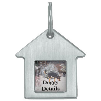 Winter snow scene with cute black and tan dog pet ID tags