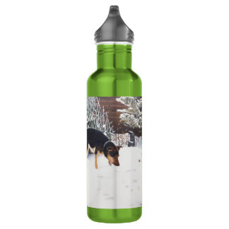 Winter snow scene with cute black and tan dog stainless steel water bottle