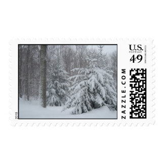 Winter Snow Stamp
