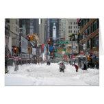 Winter Snow Storm New York City 12/26/10 Greeting Cards