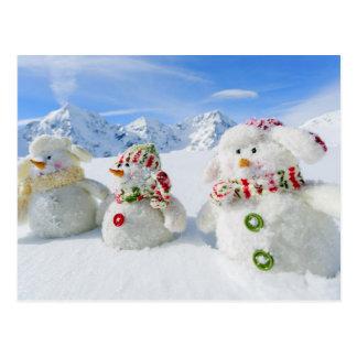 Winter, Snow, Sun And Fun, Christmas Postcard