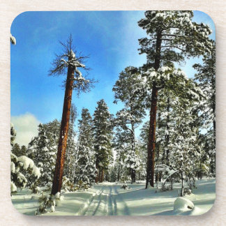 Winter Snow Trails in the Woods Trees Forest Gifts Beverage Coaster