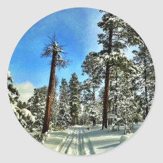 Winter Snow Trails in the Woods Trees Forest Gifts Classic Round Sticker