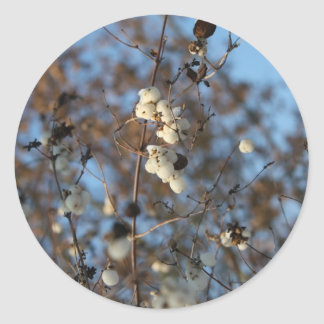 Winter snowberry flower with snowflakes round stickers