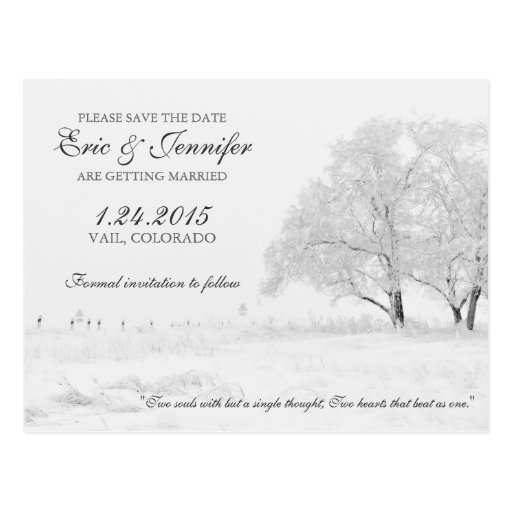 Winter Snowfall Classic Wedding Save the Date Post Cards