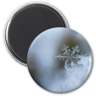 Winter Snowflake Magnet