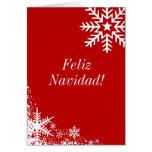 Winter Snowflakes Feliz Navidad Card