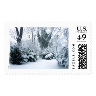 Winter Snowscape - Snow Covered Shrubs - Large Postage