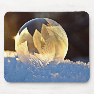 Winter Soap Bubble with Leaves Mouse Pad