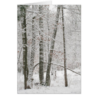 Winter Solace Card