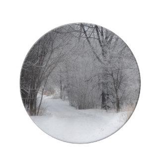 Winter Solitude Porcelain Plate