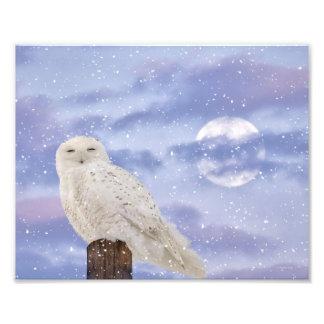 Winter solstice photo