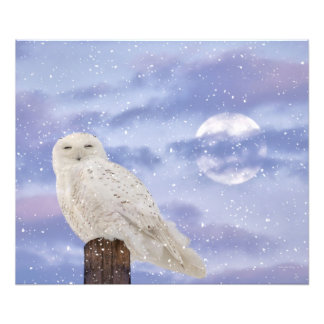 Winter solstice photo art