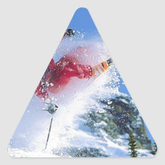 Winter sports, extreme ekiing triangle sticker