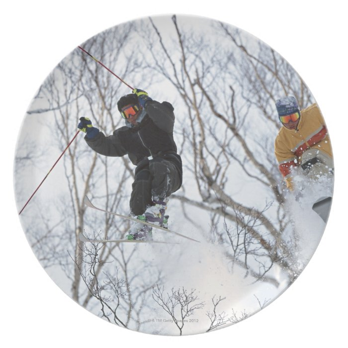Winter Sports Melamine Plate