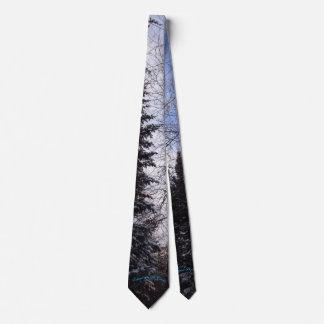 Winter Spruce Camino St Croix Neck Tie
