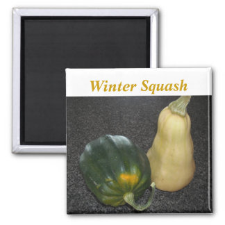 Winter Squash - Acorn and Butternut 2 Inch Square Magnet