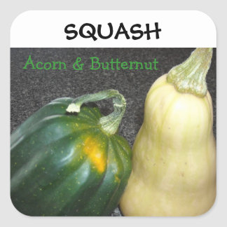 Winter Squash Square Sticker