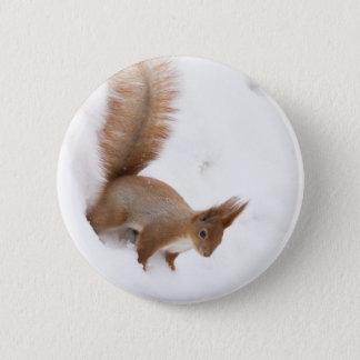 Winter Squirrel Button