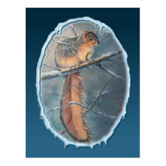 WINTER SQUIRREL by SHARON SHARPE Postcard