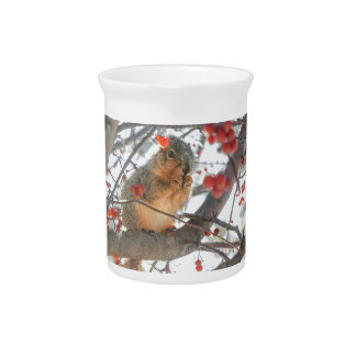 Winter Squirrel In Berry Tree Pitcher