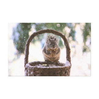 Winter Squirrel in Snow Stretched Canvas Prints